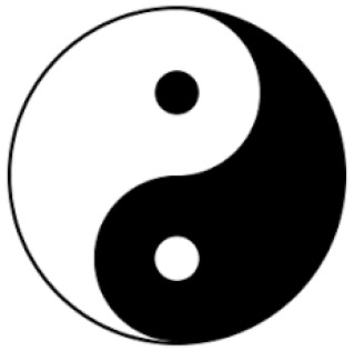 Figure 1: Yin and Yang - two forces creating a harmony