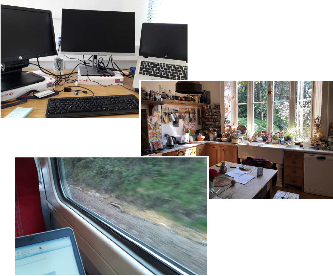 Figure 1 – Three views of working environments provided by our study participants